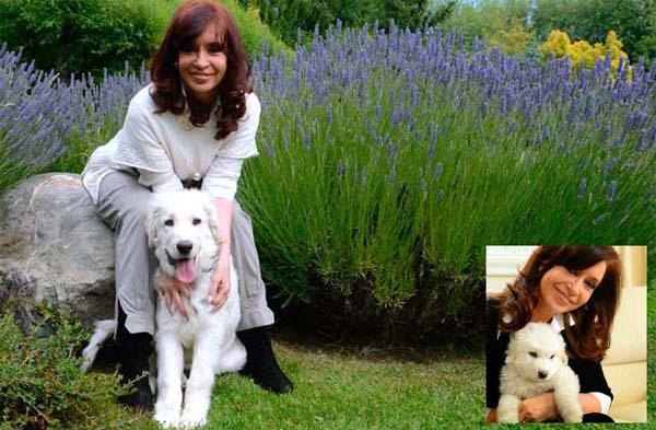 Cristina K y el Perro
