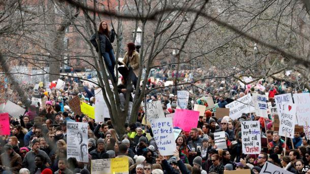 En Washington, las personas se sientan en un árbol encima de los manifestantes que portan letreros y cantan en el parque Lafayette cerca de la Casa Blanca durante una manifestación.