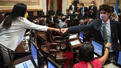 Laura Rodríguez Machado guardó silencio las últimas semanas y Martín Lousteau buscó convencer a senadores indecisos (Prensa Senado)